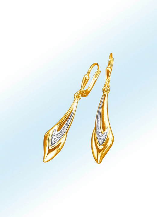 Oorbellen - Ohrringe in Bicolor, in Farbe